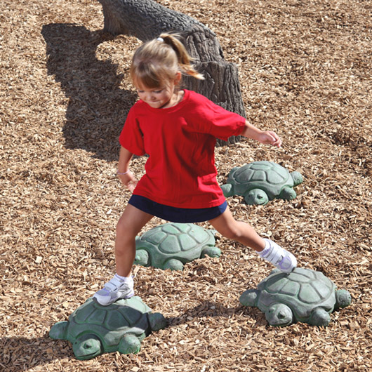 Stepping Turtles - Set of 5